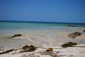 Bahia Honda Key
