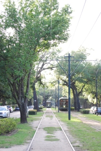 Streetcars on St. Charles Street, New Orleans