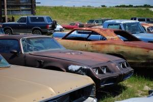 1979 Pontiac Firebird Trans Am, CTC Auto Ranch, 3077 Memory Lane, Denton