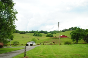 countryside near Lynchburg