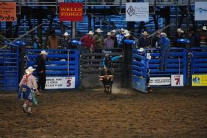 Rodeo, Cody