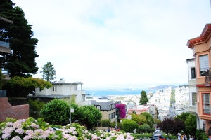View from Lombard Street, San Francisco, California