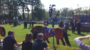 Parade ring, Derrinstown Stud Derby Trial, Leopardstown Racecourse